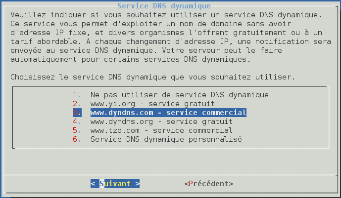 Console DNS dyn.png