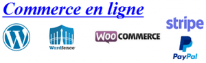 Cours-SME-101-027-CommerceEnLigne-APT.png